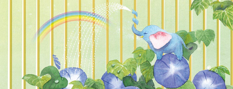 アサガオと虹