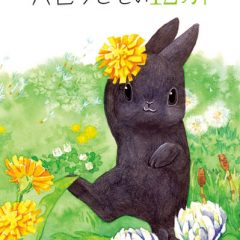 穴色ウサギの12ヶ月
